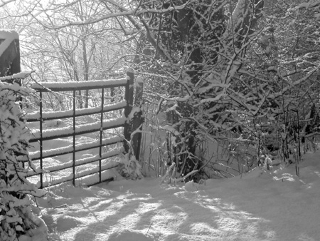 It is still winter in West Lund Lane, Kirkbymoorside