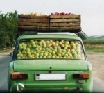 car packed full of apples